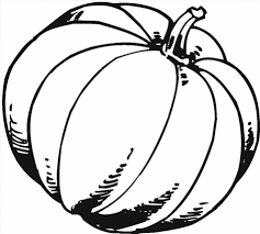 free pumpkin coloring page printable pumpkin coloring pages for
