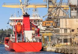 shipping rates stabilizing at higher levels world grain