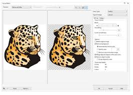 vectorization convert to vector images with powertrace corel