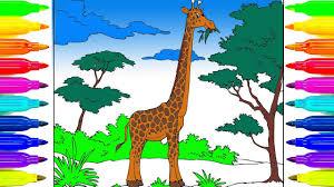 imagenes de jirafas bebes animadas para colorear cómo dibujar un jirafa para niños dibujos animados colorear para