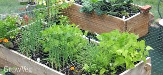 Vegetables Garden Ideas Planning A Square Foot Vegetable Garden