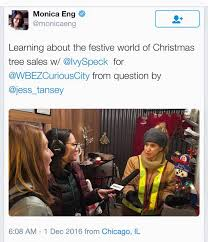 ivy u0027s christmas trees home facebook