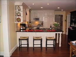 12 Inch Deep Storage Cabinet by Kitchen Bottom Kitchen Cabinets Small Kitchen Pantry Cabinet 12