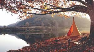 10 hanging tents and hammocks for higher ground camping
