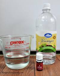 the 25 best ideas about clean washer vinegar on pinterest