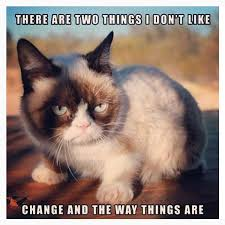 Meme Grumpy Cat - 16 of the best grumpy cat memes catster