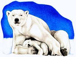 polar bear bear clip art image clipartix