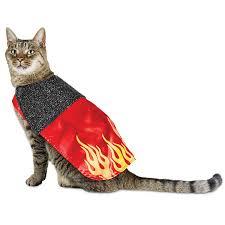 halloween kitty costumes halloween cat costumes preciouspetstores com