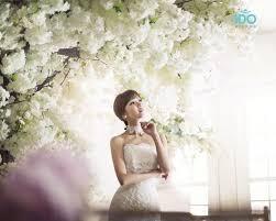 backdrop wedding korea 1068 best photos pre wedding wedding images on