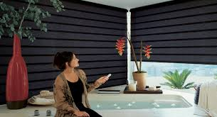 Cheap Motorized Blinds Gorgeous Remote Control Roman Shades And Bali Motorized Blinds And