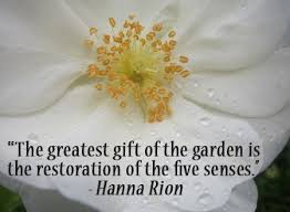 15 inspiring gardening quotes and sayings by famous authors u2013 home