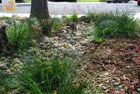 backyard creek ideas rdcny