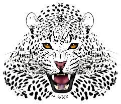 leopard tattoos askideas com