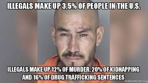 Meme Sentences - illegals make up 3 5 of people in the u s illegals make up 12