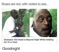 Meme Head - roses are red with violets to see slumped old head is beyond high