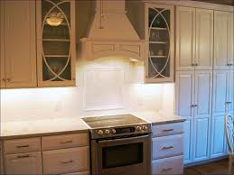 Kitchen Stock Cabinets Denver Cabinet Express Youtube Yeo Lab