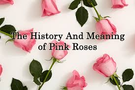 Meaning Of Pink Roses Flowers - pink rose meaning roses