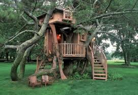 treehouse taster 3 wildly different types of tree houses urbanist