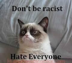Grumpy Cat No Meme - but she is not racist 14 hilarious grumpy cat memes that