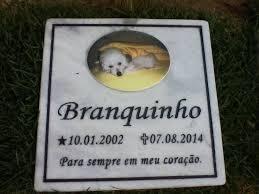 Super Jacumã possui único cemitério de animais da Paraíba com translado  @RC98