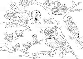 at the zoo cute woodland animals forest birds illustration for