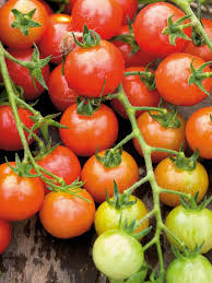 how to grow a vertical vegetable garden how tos diy