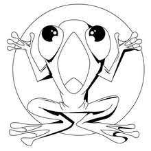 sir frog coloring pages hellokids