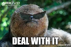 Angry Sloth Meme - deal with it deal with it sloth quickmeme