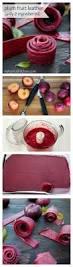 best 25 plum tree ideas on pinterest plum recipes plum jam