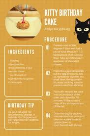 birthday cake cat crazy cat lady cat