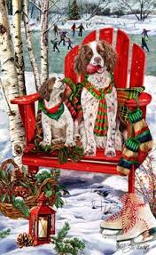 191 best for the love of english springer spaniels images on