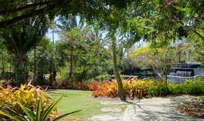 Naples Florida Botanical Garden File Naples Botanical Garden Naples Florida Dsc09632 Jpg