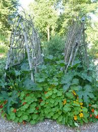 build a garden trellis how to build a garden trellis ovnblog com