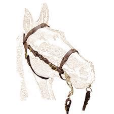 Horse Bridle Decorations De Luxe Portuguese Single Bridle With Metal Decorations