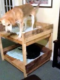 Bunk Bed For Dogs 40 Diy Pallet Dog Bed Ideas Don U0027t Know Which I Love More