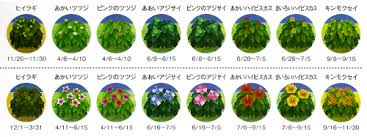 acnl shrubs flowers animal crossing nintendo 3ds bushes plant new leaf acnl 2ds