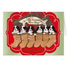 dog christmas cards bernese mountain dog christmas cards invitations greeting
