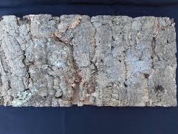 tree bark wall covering bark tiles bark for sale amcork