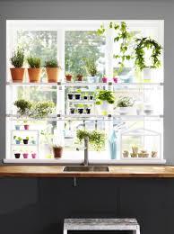 kitchen window shelf ideas herb garden in the window river house ideas pinterest herbs