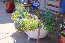 Winter Container Garden Ideas Texasdaisey Creations Container Garden Ideas