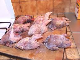cuisiner des perdreaux repas de chasse à la ferme 8 perdreaux au chou vert