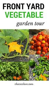 front yard vegetable garden tour video plus ideas for what to plant