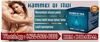 agen hammer of thor asli di kalimantan tengah 082226556333