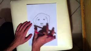 apprendre à dessiner cours de dessin pour faire un chien