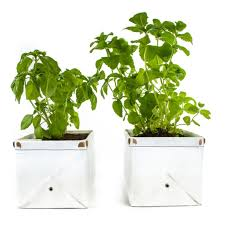 patch herb planters cool hunting