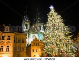 czech republic prague christmas tree at the old town square