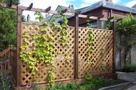 decorative garden fencing iron fence ideas fascinate