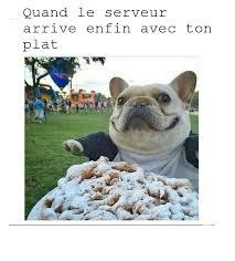 Best Day Meme - doggo best day meme by blobfavenger memedroid