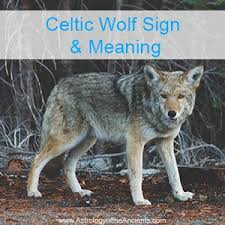the celtic wolf is a powerful zodiac symbol for the celts find