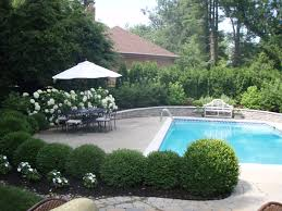 white coping also pool handrails also umbrella and flowers plants
